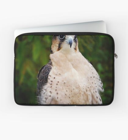 Lanner Falcon? Laptop Sleeve