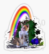 Cat/ch the rainbow Sticker