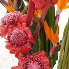 flores tropicales by Bernhard Matejka