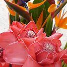 flores tropicales coloradas by Bernhard Matejka