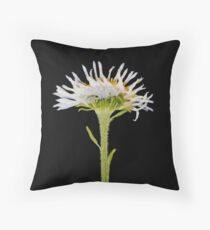 Member 6 Throw Pillow