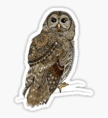 Barred Owl Tangle Sticker