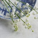 Lily of the Valley by Jill Ferry