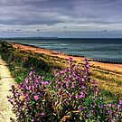 Whitstable Beach by Tom Gomez