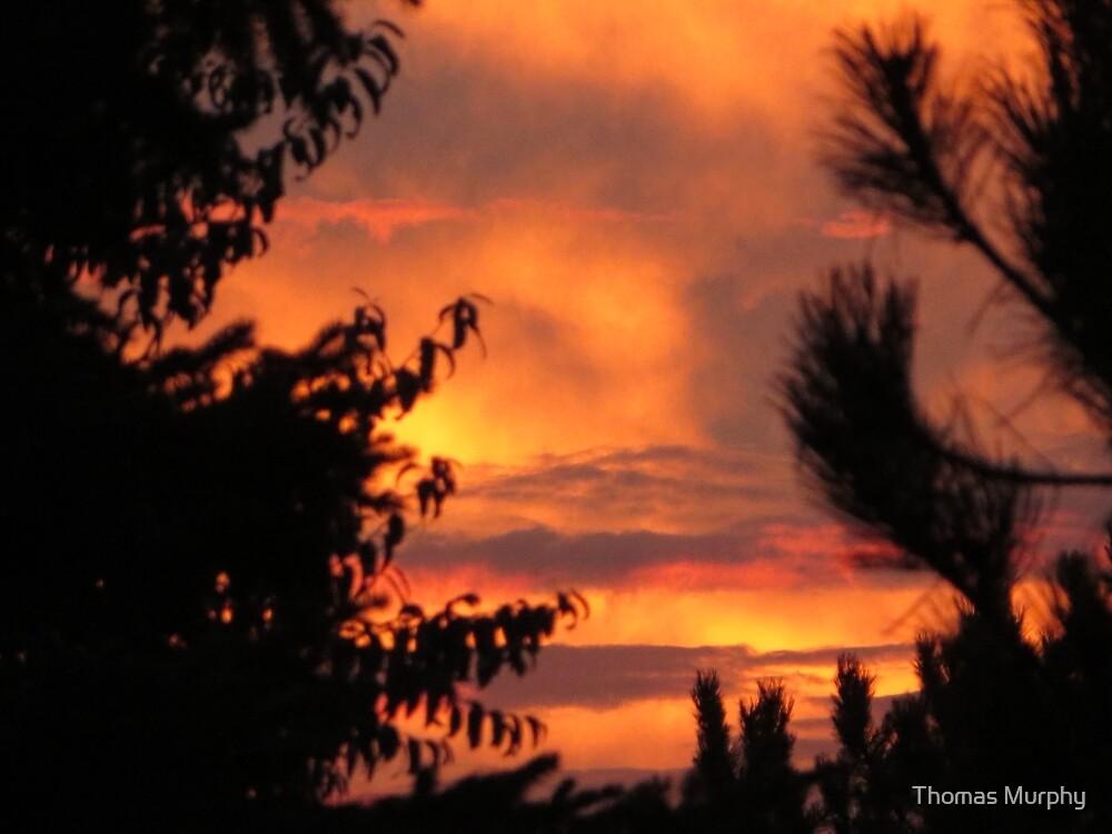 Milwaukee Sunset by Thomas Murphy