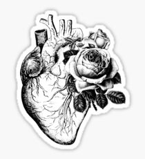 Floral Anatomical Heart Sticker