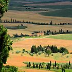 Countryside of Tuscany by Barbara  Brown