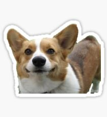 corgi sticker Sticker