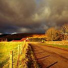 THE ROAD HOME by leonie7