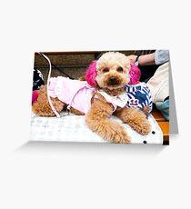 Dog with pink ears, Kachi Kachi Ropeway, Fuji Five Lakes, Japan Greeting Card