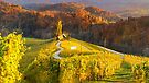 The heart of Styria in Autumn by Delfino