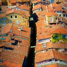 Lucca Rooftops by Stuart Row