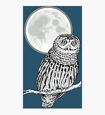 owl animal night moon dark wild illustration Photographic Print