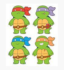 Turts and Emotes Photographic Print