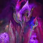 Rose Abstract by Elizabeth Lock