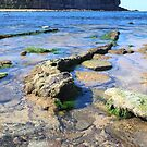 Mona Vale Beach (4) by Jane Wilkinson-Franssen