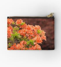 Peach Profusion Amid a World of Brick Red Studio Pouch