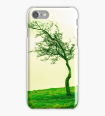 Scraggly Phoenix Park Tree iPhone Case/Skin
