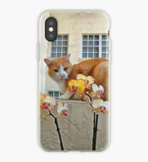 Cat Behind the Flowers iPhone Case