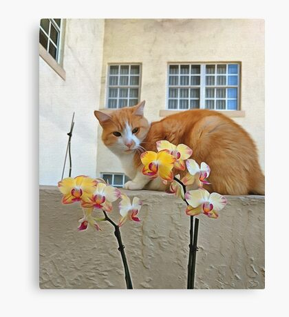 Cat Behind the Flowers Canvas Print