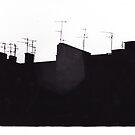 Analog Roof by kishART