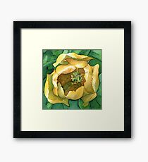 Yellow Tulip at Attingham Park - Watercolour Markers Framed Print