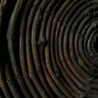 Dark Spirals by Jing3011