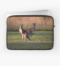 Kangaroos with Joey Late Afternoon at Vacy, NSW Australia Laptop Sleeve
