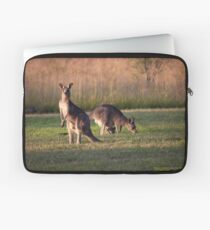 Kangaroos and baby Joey grazing at Vacy, NSW Australia Laptop Sleeve