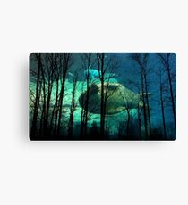 outdoors-y dream Canvas Print