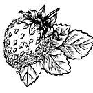 Strawberry Pillow by Vanessa Trepanier