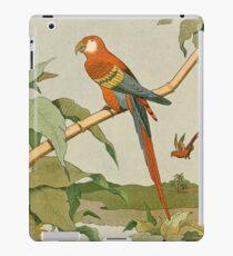 Macaw Parrot on Bamboo Tree iPad Case/Skin