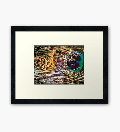 Chase My Soul Framed Print