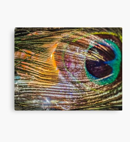Chase My Soul Canvas Print
