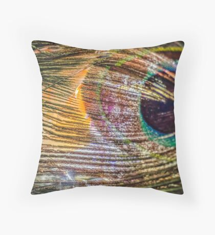 Chase My Soul Throw Pillow