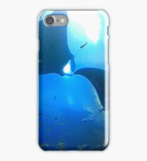 A pair of rays (manta rays) iPhone Case/Skin