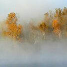 October morning by Jeannine St-Amour