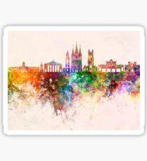 Cork skyline in watercolor background Sticker