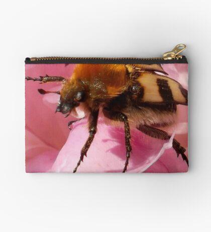 Bee beetle on peony Studio Pouch
