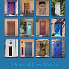 Doors of New Mexico by cinn