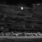 Moonlight On The Stone Circle by Derek Smyth