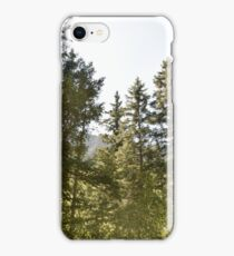 Trees of Waterton Lakes NP iPhone Case/Skin