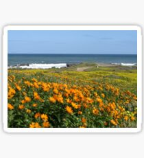 Wildflower season at Kabeljoubank  Sticker