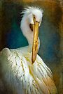 Finer Feathered Friends: Stork by alan shapiro