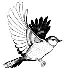 Flying Bird illustration Black and white by Linn Warme