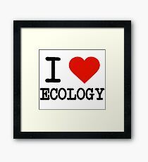 I Love Ecology Framed Print