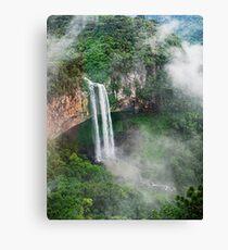 Waterfall in Brazil Canvas Print