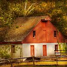 Country - Barn - Out to pasture by Mike  Savad