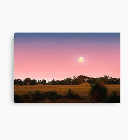 Moonrise At Dusk  Canvas Print