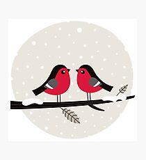 New in shop : Christmas vintage 2 birds edition Photographic Print